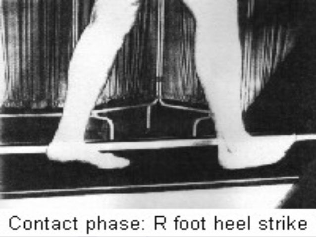 KINEMATICS AND KINETICS OF GAIT ►Path of Center ofPath of Center of GravityGravity  midway between themidway between the ...