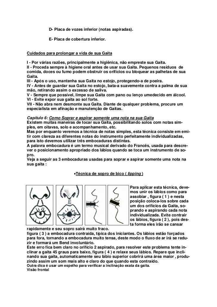 ·Técnica de notas cobertas ( tongue blocking )Para aplicar esta técnica, devemos adaptar os lábios sobre a Gaita cobrindo ...