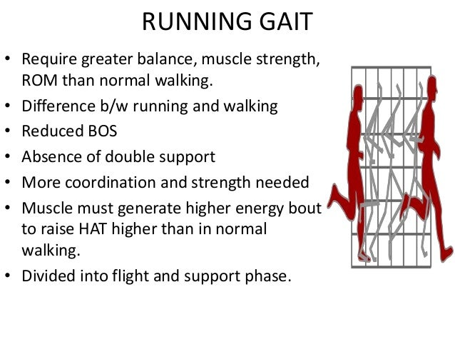 biomechanics of running essay There is a lot of information out there about running, foot strike, injury, equipment, training the information is endless some of it is good some bad it's becoming increasingly difficult to separate the science from the marketing and the marketing from the hype below are some of the resources we use to keep abreast of.