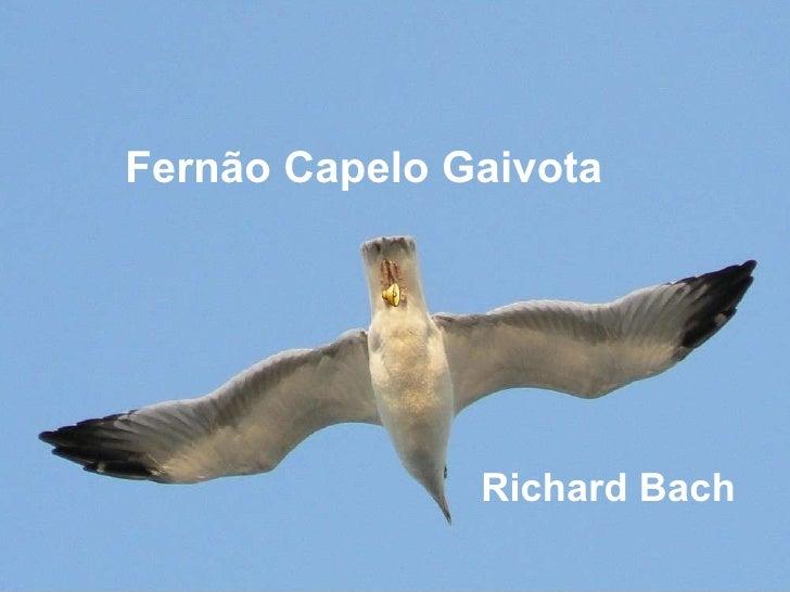 Fernão Capelo Gaivota Richard Bach