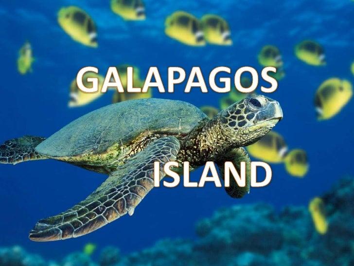 GALAPAGOS ISLAND<br />