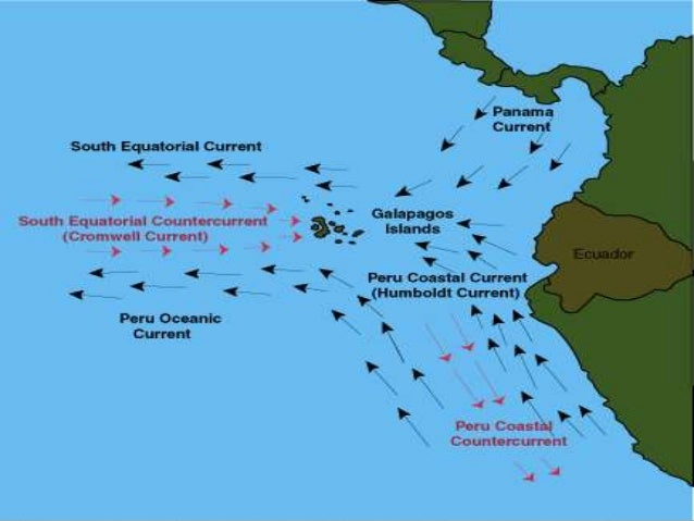 Why Are The Galapagos Islands Important To Natural Selection