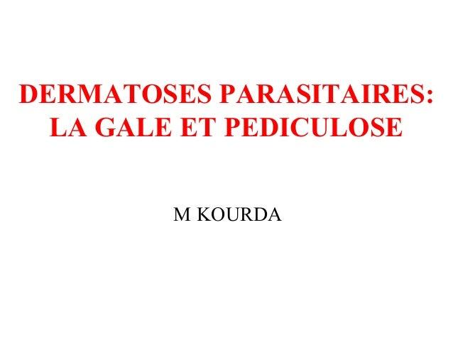DERMATOSES PARASITAIRES:LA GALE ET PEDICULOSEM KOURDA