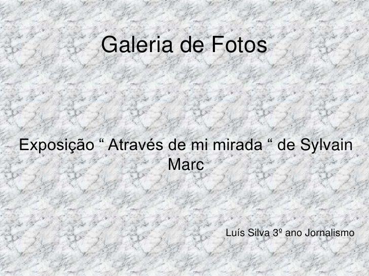 """Galeria de Fotos <br />Exposição """" Através de mi mirada """" de SylvainMarc<br />Luís Silva 3º ano Jornalismo <br />"""