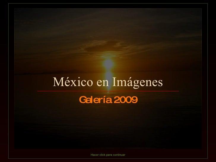 Galeria De  Mexico 2009