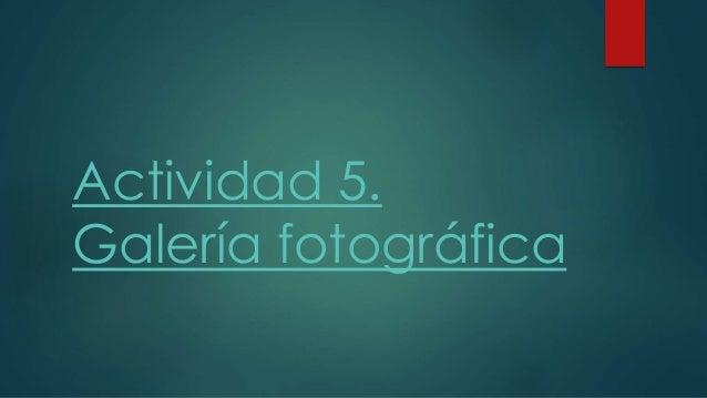 Actividad 5.  Galería fotográfica