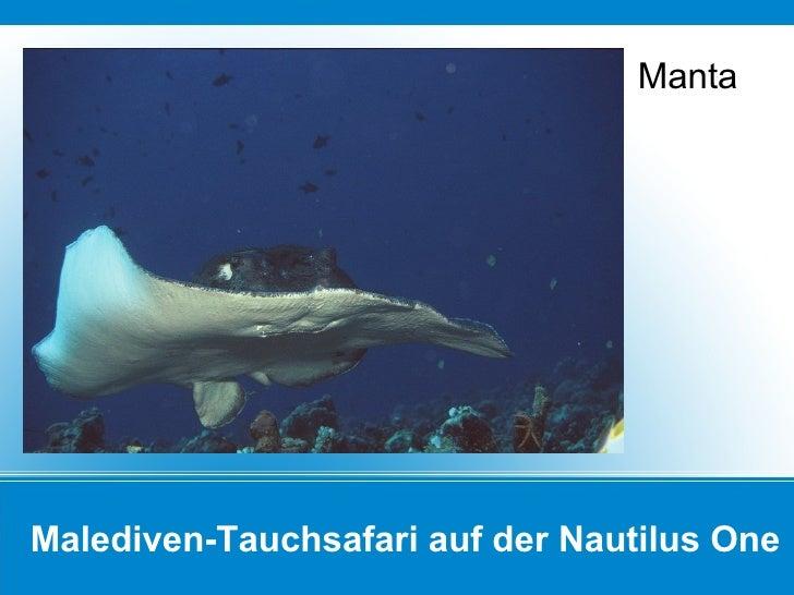 Malediven-Tauchsafari auf der Nautilus One Manta