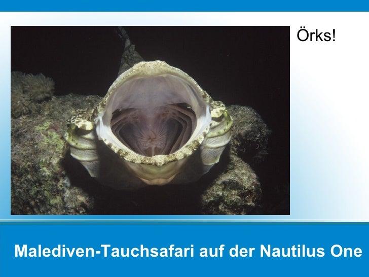 Malediven-Tauchsafari auf der Nautilus One Örks!