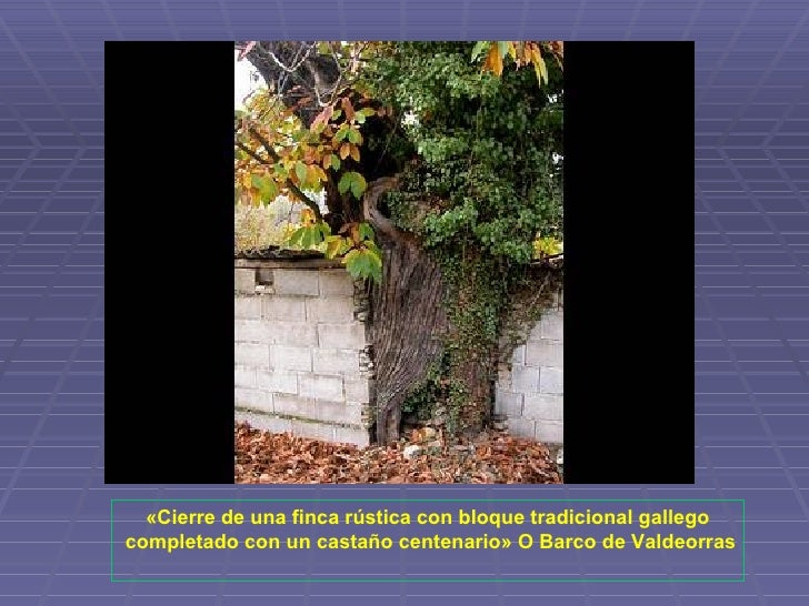 Galicia es unica - Cierres de fincas en galicia ...