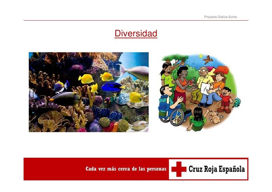 Proyecto Galicia SumaDiversidadDi    id d
