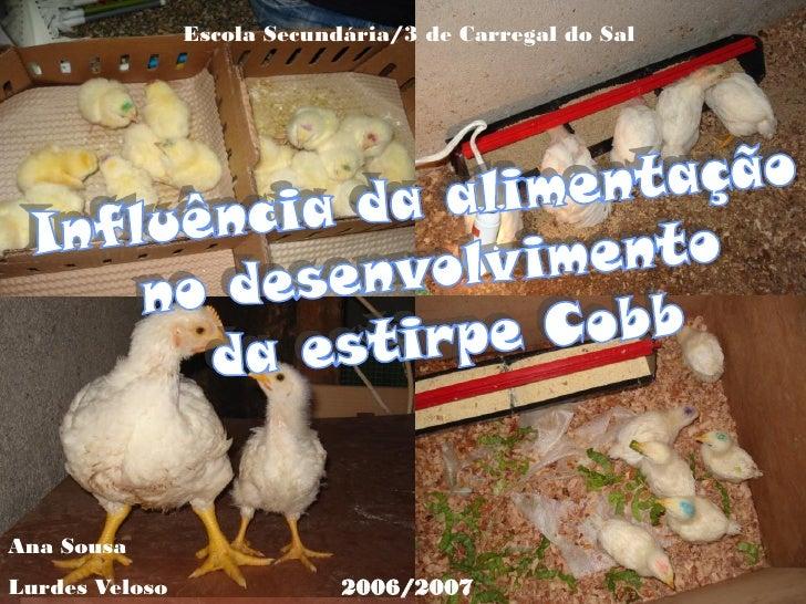 Escola Secundária/3 de Carregal do Sal     Ana Sousa Lurdes Veloso                2006/2007