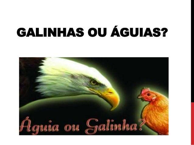 GALINHAS OU ÁGUIAS?