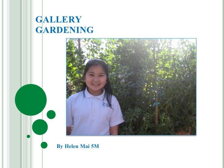 GALLERY GARDENING By Helen Mai 5M