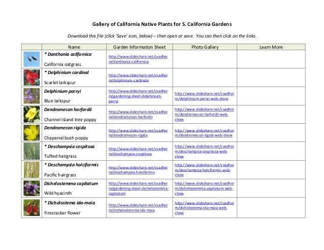 Gallery of California Native Plants for S. California Gardens Download this file (click 'Save' icon, below) – then open or...