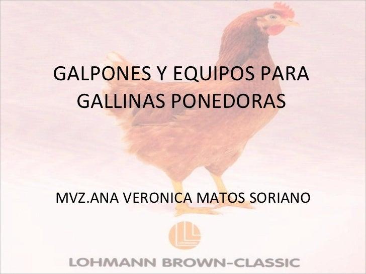 GALPONES Y EQUIPOS PARA GALLINAS PONEDORAS MVZ.ANA VERONICA MATOS SORIANO