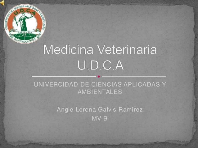UNIVERCIDAD DE CIENCIAS APLICADAS Y AMBIENTALES Angie Lorena Galvis Ramirez MV-B