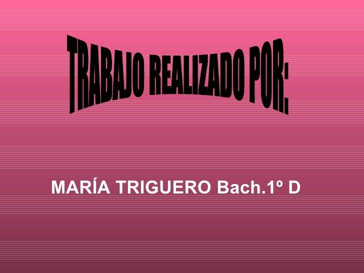 MARÍA TRIGUERO Bach.1º D TRABAJO REALIZADO POR:
