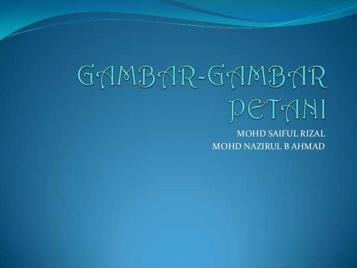 GAMBAR-GAMBAR PETANI<br />MOHD SAIFUL RIZAL<br />MOHD NAZIRUL B AHMAD<br />