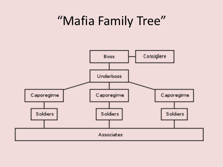 A description of the mafia as an organized crime organization