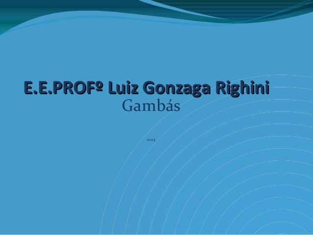 E.E.PROFº Luiz Gonzaga RighiniE.E.PROFº Luiz Gonzaga Righini Gambás 2014