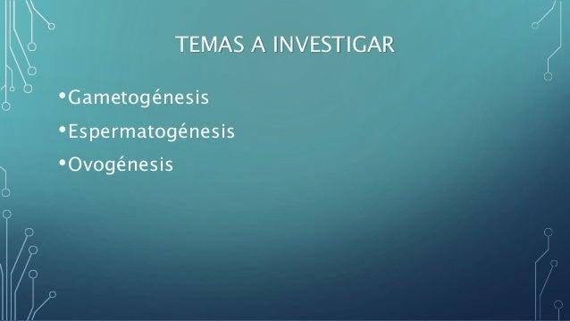 GAMETOGÉNESIS - UNY. Slide 2