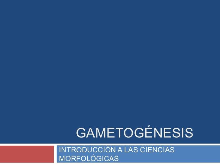 GAMETOGÉNESISINTRODUCCIÓN A LAS CIENCIASMORFOLÓGICAS