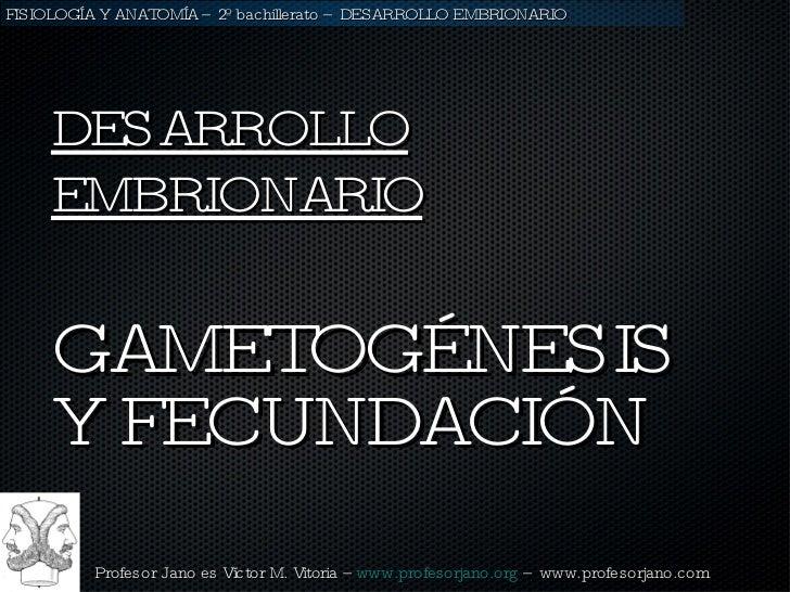 <ul><li>GAMETOGÉNESIS Y FECUNDACIÓN </li></ul>DESARROLLO EMBRIONARIO