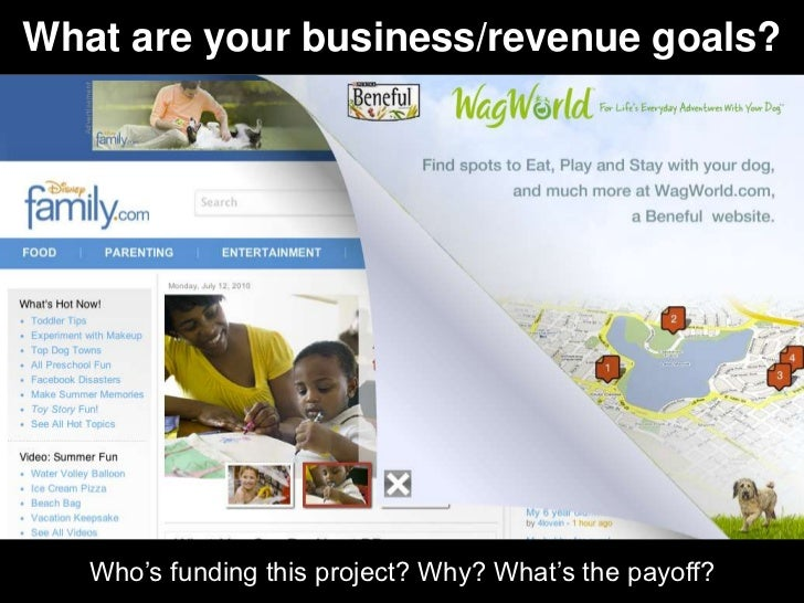 What are your business/revenue goals?   Who's funding this project? Why? What's the payoff?