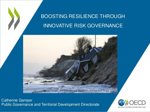 BOOSTING RESILIENCE THROUGH INNOVATIVE RISK GOVERNANCE Catherine Gamper Public Governance and Territorial Development Dire...