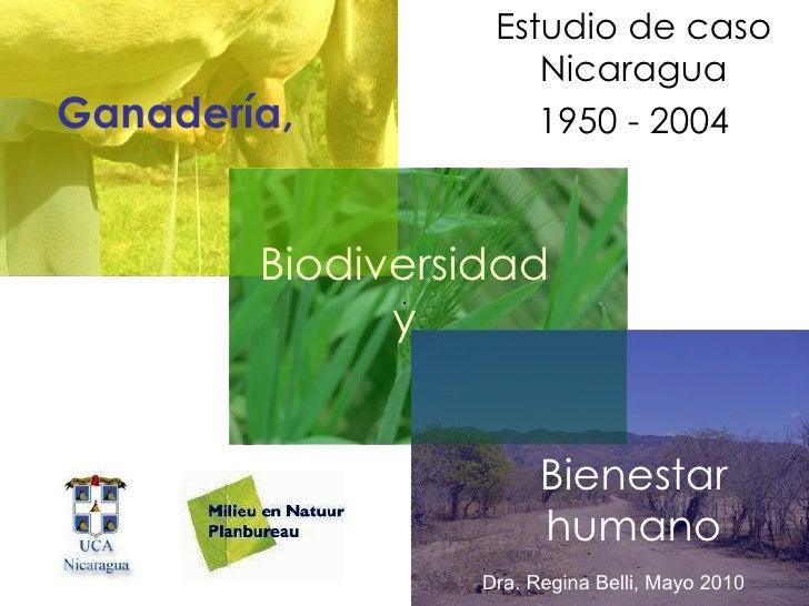 Ganadería, Estudio de caso Nicaragua 1950 - 2004 Biodiversidad y Bienestar humano Dra. Regina Belli, Mayo 2010
