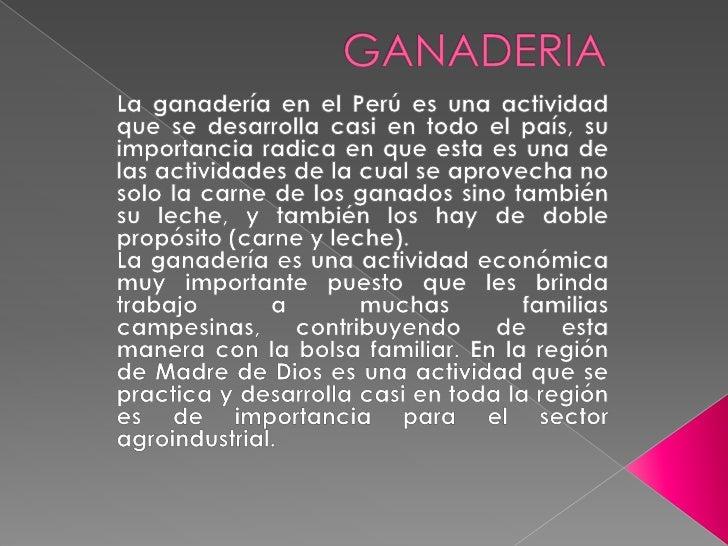 GANADERIA<br />La ganadería en el Perú es una actividad que se desarrolla casi en todo el país, su importancia radica en q...