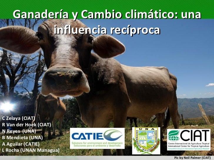 Ganadería y Cambio climático: una         influencia recíprocaC Zelaya (CIAT)R Van der Hoek (CIAT)N Reyes (UNA)B Mendieta ...