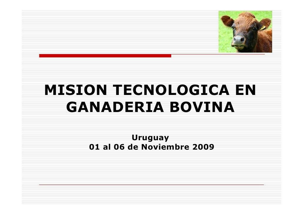 MISION TECNOLOGICA EN   GANADERIA BOVINA               Uruguay     01 al 06 de Noviembre 2009