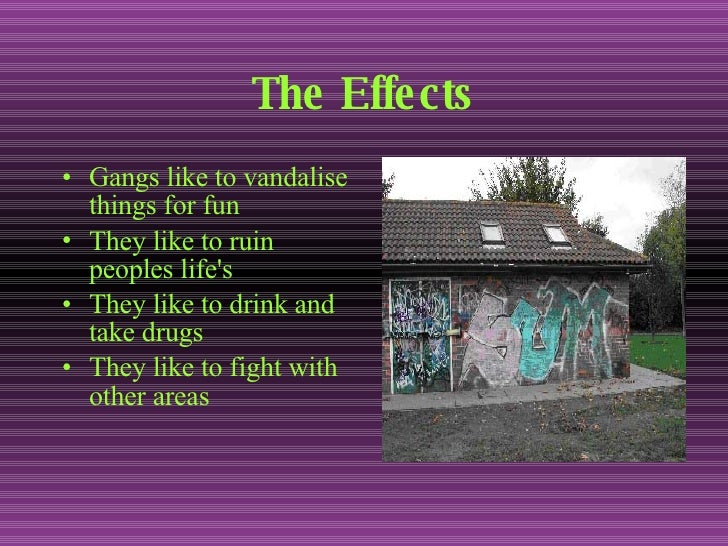 effects of gangs on society