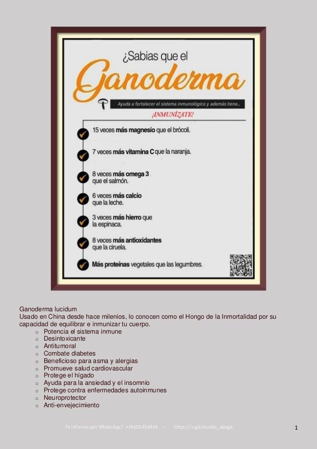 Te informo por WhatsApp? +34650454443. – https://is.gd/nicolas_alzaga 1 Ganoderma lucidum Usado en China desde hace mileni...