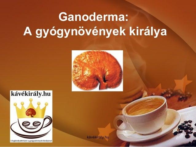 Ganoderma: A gyógynövények királya kávékirály.hu