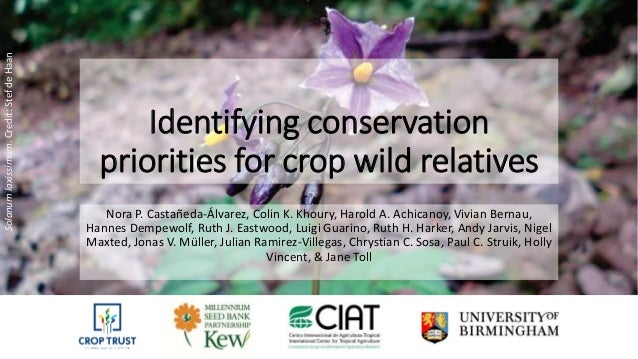 Identifying conservation priorities for crop wild relatives Nora P. Castañeda-Álvarez, Colin K. Khoury, Harold A. Achicano...