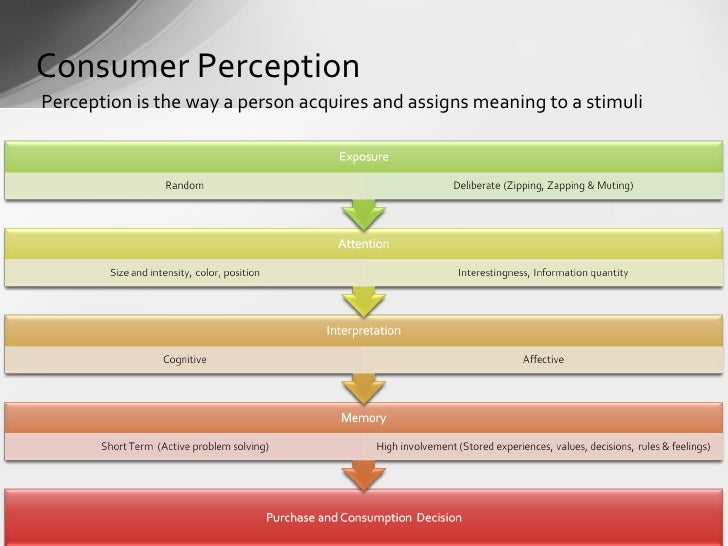 the importance of understanding consumer behaviour Understanding consumer  attitude might have to the consumer understanding the purpose of a consumer's  of importance or priority of.