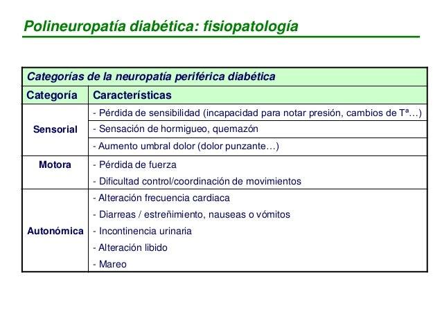 MECANISMO - Múltiples. Pero el más importante: Hiperglucemia Apoptosis neuronal Cambios metabolismo que provocan estres ox...