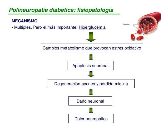  Hipertensión  Tabaco  Alcohol FACTORES DE RIESGO ENFOQUES DEL TRATAMIENTO a) Buen control glucemia (HbA1c < 7%) b) Cui...