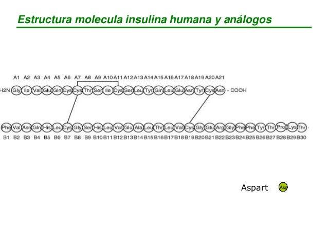 Estructura molecula insulina humana y análogos GlyGlargine ArgGlargine Arg Detemir Lys