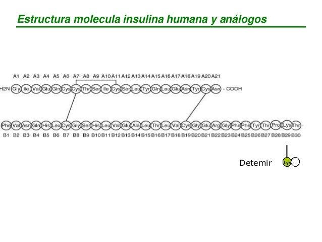 Análogos de acción ultrarrápida (insulina aspart, insulina lispro) Insulina de acción rápida o regular Insulina de acción ...