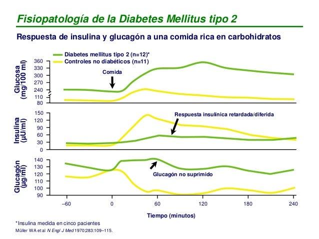 Fisiopatología de la Diabetes Mellitus tipo 2 Respuesta de insulina y glucagón a una comida rica en carbohidratos Insulina...