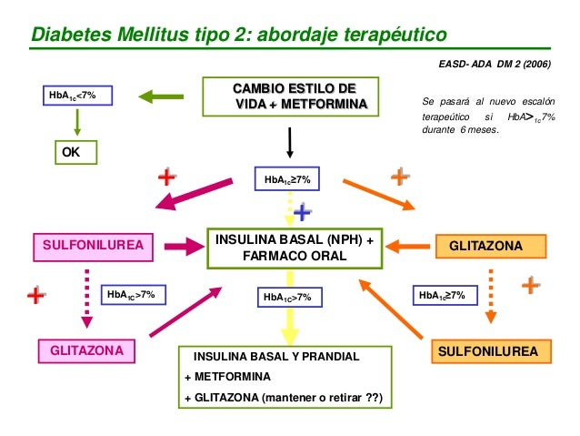 Diabetes Mellitus tipo 2: abordaje terapéutico