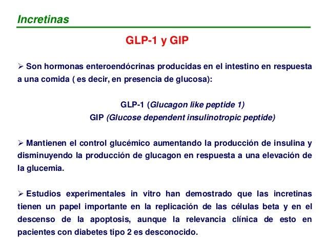 """ La glucosa oral estimula en mayor medida la secreción de insulina ( en comparación con la vía IV)  El """"efecto incretina..."""