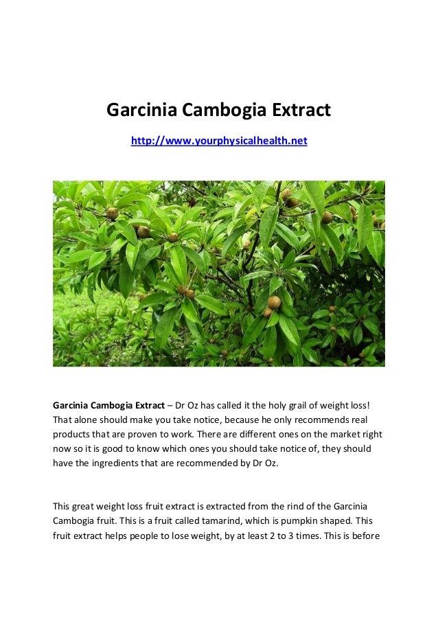 Garcinia Cambogia Extract                   http://www.yourphysicalhealth.netGarcinia Cambogia Extract – Dr Oz has called ...