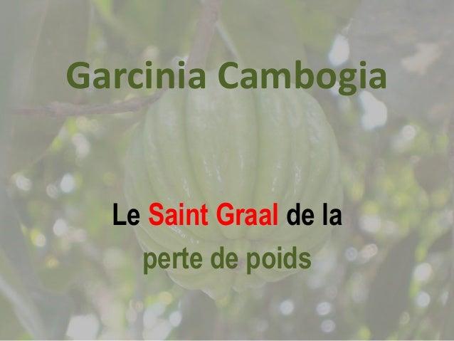 Garcinia Cambogia  Le Saint Graal de la  perte de poids