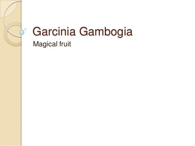 Garcinia Gambogia Magical fruit