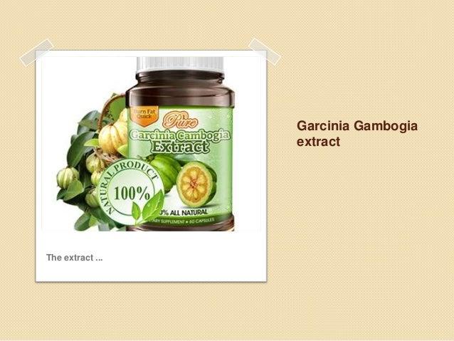 Garcinia gambogia Slide 3