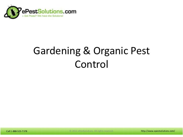 Gardening & Organic Pest                              ControlCall 1-888-523-7378          © 2012 ePestSolutions. All right...